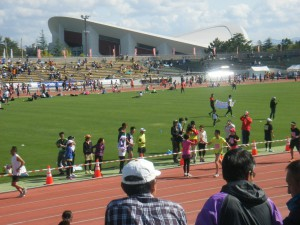 新潟シテイマラソンH25 013