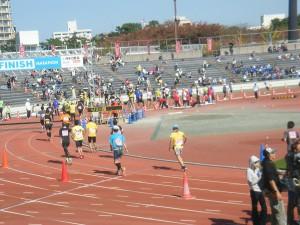 H26新潟シテイマラソン (18)