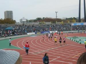 H27新潟シティマラソン (8)