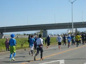 H27富山マラソン (19)