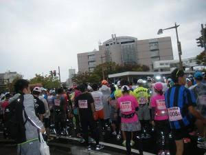 H27新潟シティマラソン (5)