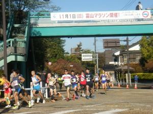 H27富山マラソン (15)